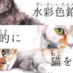 水彩色鉛筆で写実的に猫を描く。